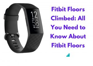 Fitbit Floors Climbed: All You Need to Know About Fitbit Floors