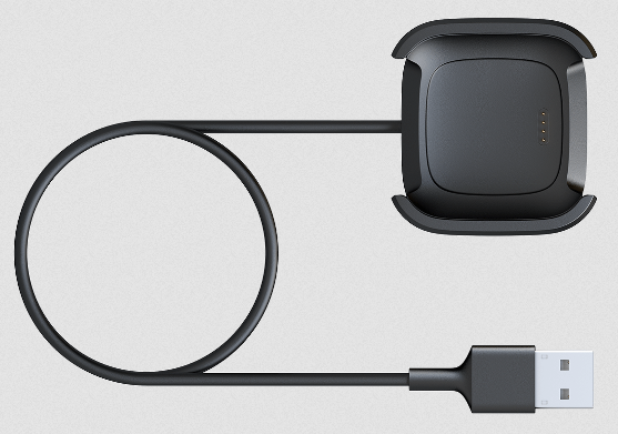 Versa 2 Charging Cable
