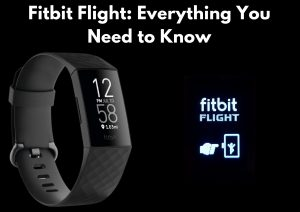 Fitbit Flight Game: All You Need to Know